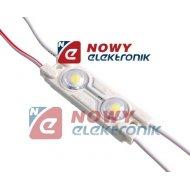 Moduł LED 2xPLCC6 bi.zi 12V 0,5W VDC IP65 6500K 44lm 2xSMD5050 47x15x4.5