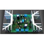 NE060-NE060A Wzm.mocy TDA2030,