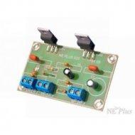 NE020 Wzmacniacz mocy mono 30W,