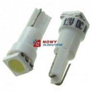 DIODA LED T5-WG biała 1SMD 5050 12V