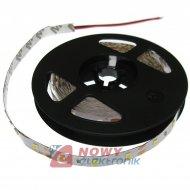 Taśma LED 3528 B.C IP20 300 ROLK led SMD3528  4,8W/m