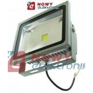 Halogen LED 30W GREY WZ b.zimny Biały reflektor/naświetlacz