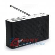 Radio FM i Internetowe SoundPath DAB cyfrowe