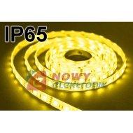 Taśma LED SMD5050 żółty IP(1m) IP65 (60LED/1m) w silikonie 12V
